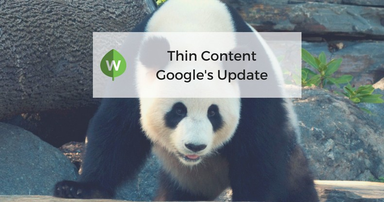 "Is ""Thin Content"" The New Google Update?"
