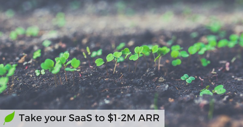 Proven Growth Hacking Strategies for B2B SaaS: The Definitive Guide